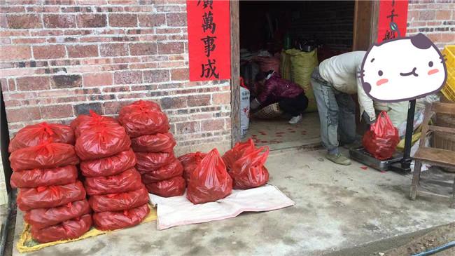 5.图为贫困户正在分装,一袋袋整装待发的马蹄。.jpg